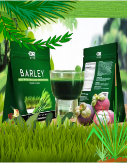 DR VITA BARLEY WITH WHEATGRASS AND MANGOSTEEN